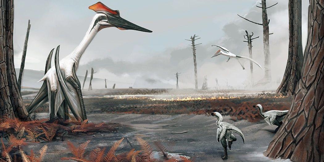 Birçok pterozor fosili, uçmaya yarayan son derece güçlü kaslara sahip olduklarını gösteriyor.